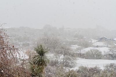 Tucson Snow 2013 -9