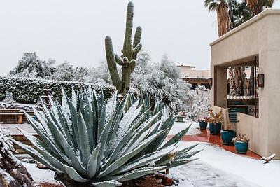 Tucson Snow 2013 -46