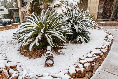 Tucson Snow 2013 -37