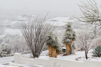 Tucson Snow 2013 -34