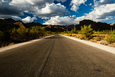 Sabino Canyon road