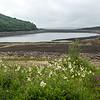 Tunstall Reservoir in Co. Durham