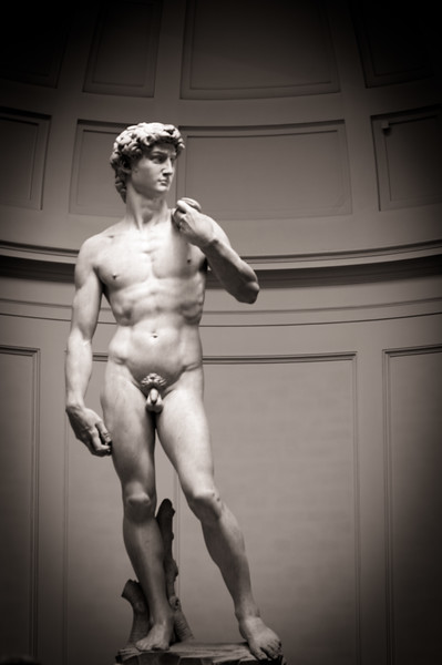 Michelangelo's marble David