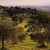 Firenze countryside