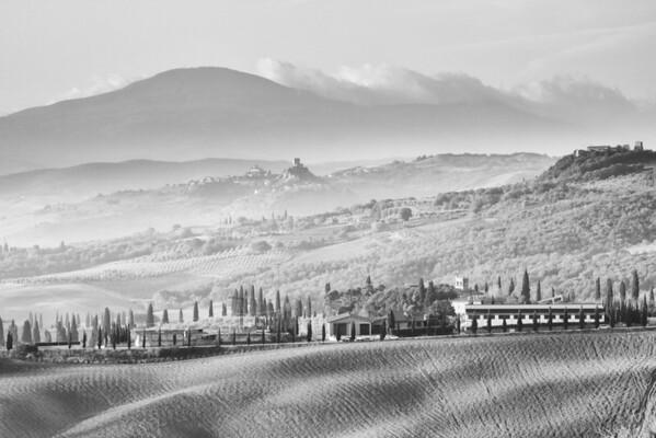 Tuscan Mists