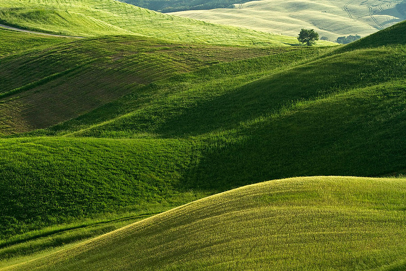 Details of Tuscany - Lone Tree.