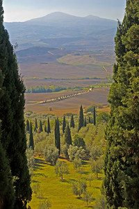 View from Pienza