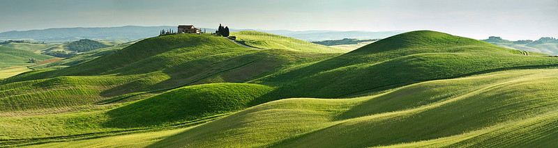 The perfect rolling hills of Tuscany,  a truly living landscape. Standing by the field, you can feel its breath.