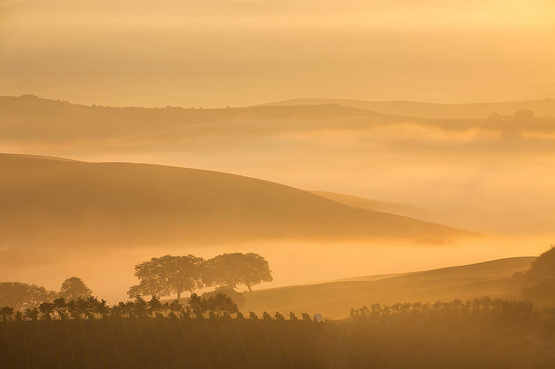 Dreamy landscape of Tuscany immersed in morning mist.
