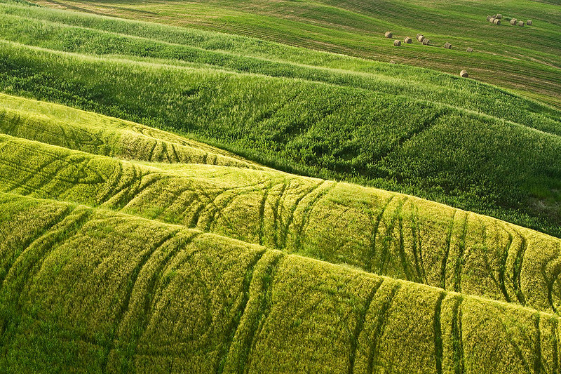 Details of Tuscany - Rolling haystacks.