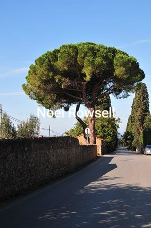 Italy #4 041