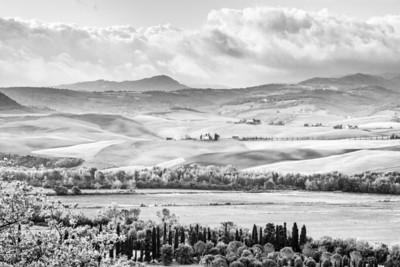 Tuscan Textures 4