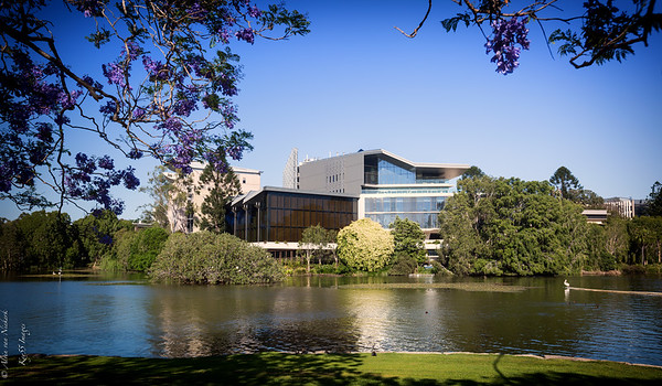 University of Queensland -  lake
