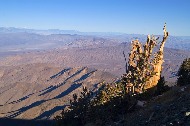 Telescope Peak Trail - Death Valley - California