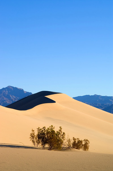 Dunes - Death Valley - California