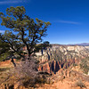 On the Observation Point Trail<br /> View north-west over the main canyon