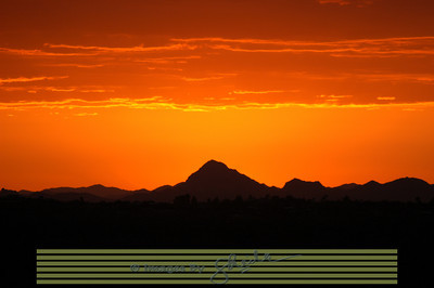 Sunset in Saguaro National Park Arizona, USA