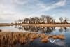 November 2011. Prime Hook Wildlife Refuge, East Coast of Maryland.