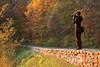October 2011. Skyline Drive, Shenandoah National Park.