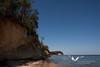 October 2011. Calvert Cliffs State Park.