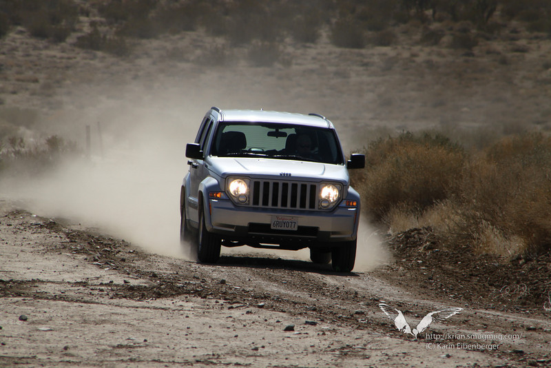 March 2012. Geology Tour Road, Joshua Tree. I love 4WD and dirt roads... (C) Bernhard.