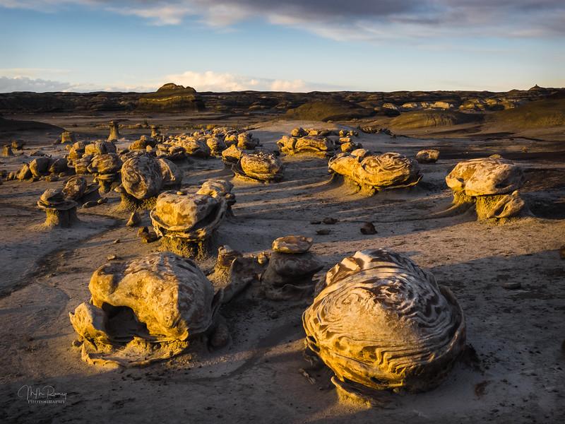 Rock Turtles II