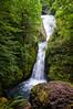 Bridal Veil Falls, on the Columbia River Gorge, Oregon. July 2012. [Bridal Veil Falls 2012-07 001 OR-USA_TC&V]