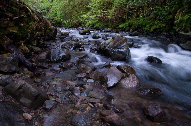Myrtle Creek, Del Norte County, California, May 2011