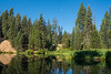 The second, smaller, lake at Plaskett Meadows Campground at 6,000 feet altitude, in the Mendocino National Forest, California, August 2017. [Plaskett Meadows 2017-08 007 CA-USA]