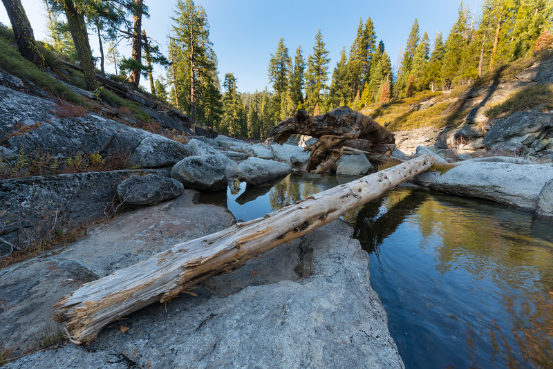 Fallen log on an early winter afternoon on the South Fork of the Rubicon River in the Sierra Nevada Mountain Range, California, October 2018. [RubiconRiver-SthFork 2018-11 HDR-3 001 CA-USA]