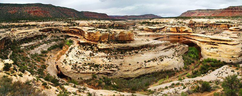 River Bend at Natural Bridges National Monument