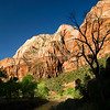 Virgin River through Zion - Zion National park