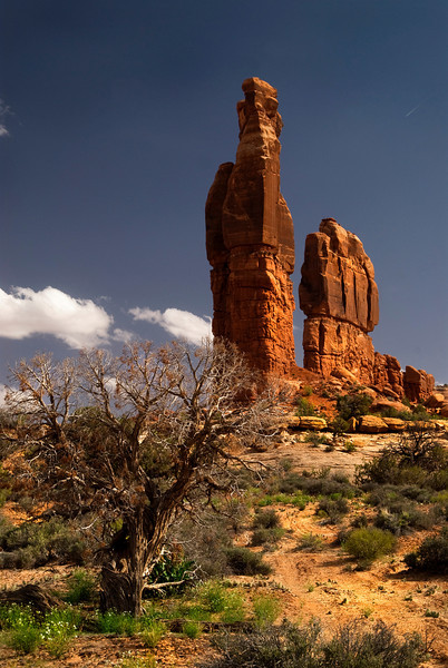 Determination Towers - Moab