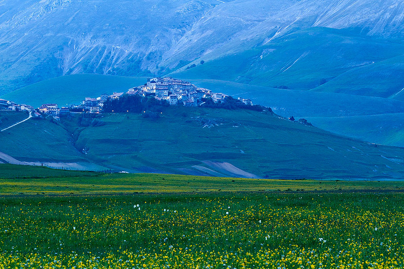 The village of Castellucio surrounds by field of yellow wild flowers.