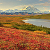 Across The Valley Of Denali - Denali National Park, Alaska