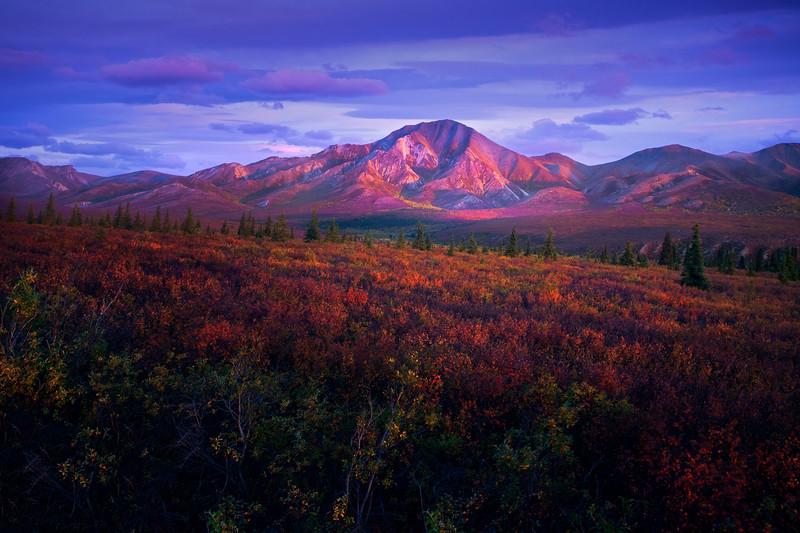 Last Light Of The Autumn Evening Hitting The Peak