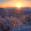 Sunglow On Foreground Hoarfrost -Ester Dome, Fairbanks, Alaska