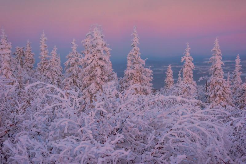 Repeating Statues Of Twiligh -Ester Dome, Fairbanks, Alaska