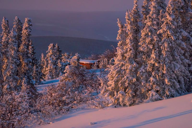 Snowy Cabin In The Woods -Fairbanks, Mt Aurora Skiland, Alaska