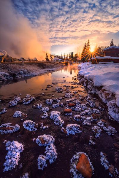 Frozen Lilies In The River At Sunrise -Chena Hot Springs Resort, Outside Fairbanks, Alaska