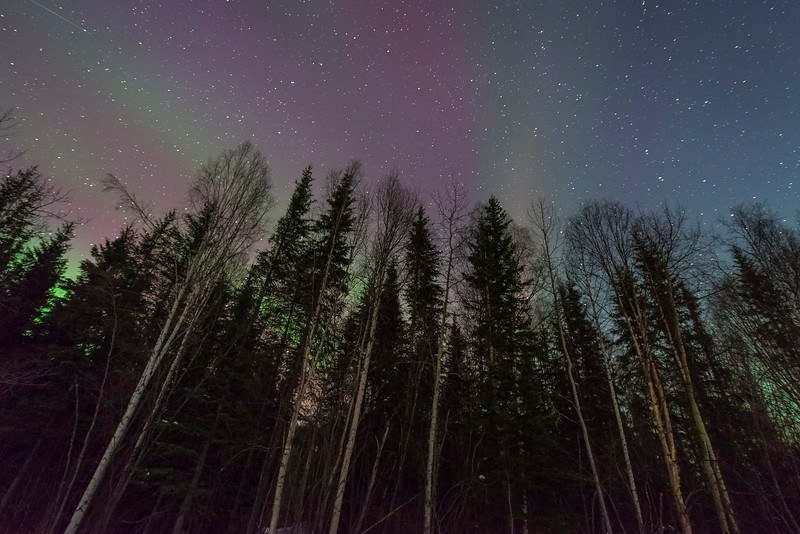Looking Up At The Sky Night -Chena Hot Springs Resort, Fairbanks, Alaska