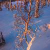 Standing On The Edge -Fairbanks, Mt Aurora Skiland, Alaska