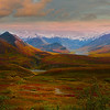 The Variety Of Colors Among Alaskan's Tundra - Denali National Park, Alaska