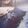 Obscured By The Fog -Chena Hot Springs Resort, Outside Fairbanks, Alaska