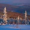 Framing The Valley In Pink -Fairbanks, Mt Aurora Skiland, Alaska