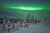 Moments Of Silence Under The Magic Light - Mt Skiland, Fairbanks, Alaska