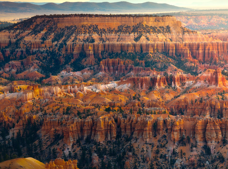 Early Morning Light Hitting The Valley Of Hoodoos - Bryce Canyon National Park, Utah