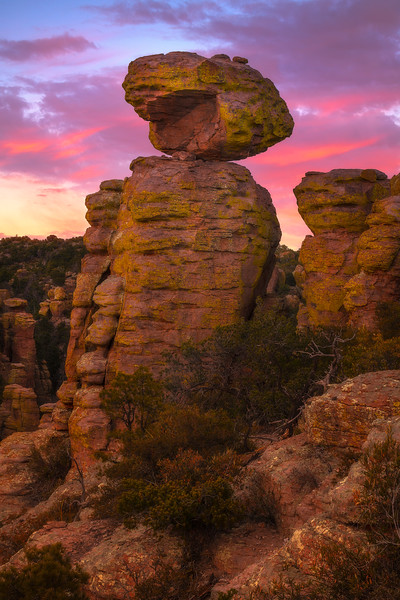 Golden Reds At The Touch Of Sunset - Chiricahua National Monument, Arizona