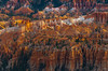 The Morning Sidelight On The Theatre Of Hoodoos - Bryce Canyon National Park, Utah