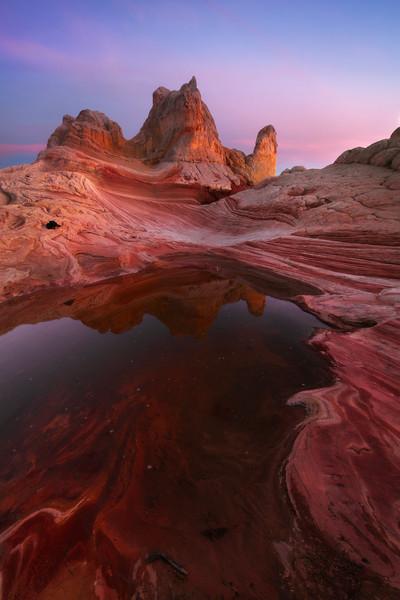 Twilight Reflects In Rainpools - White Pockets, Vermillion Cliffs National Monument, Arizona